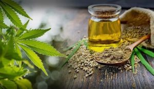 CBD Oil and Edibles